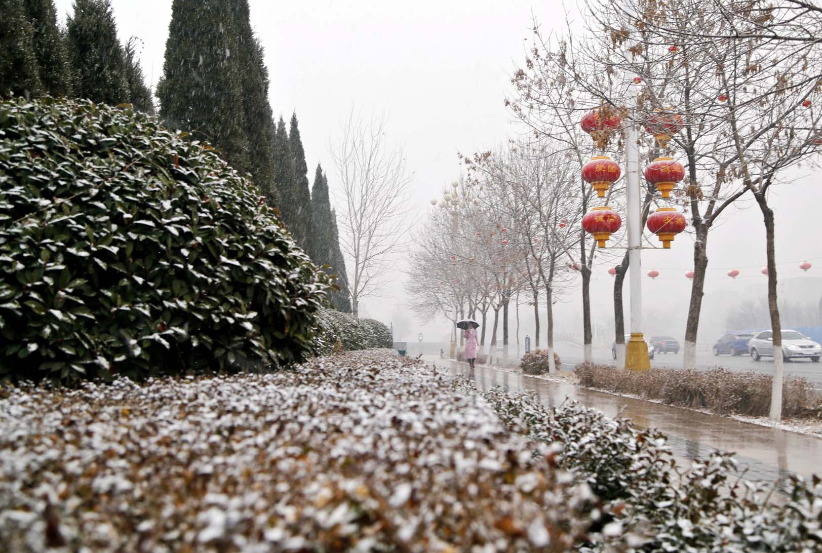我市迎来立春后的首场降雪 美不胜收