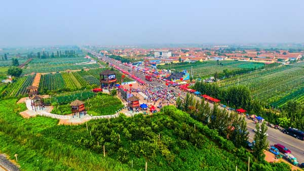 中国・垦利郝家第十一届葡萄文化旅游节举行