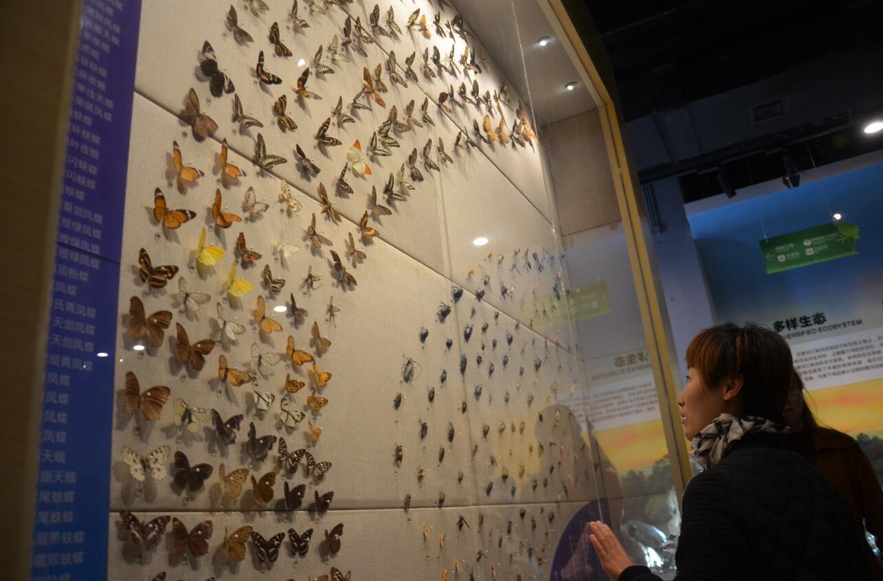 全国最大鸟类专题博物馆开馆